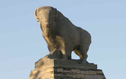 Fort Hays buffalo statue