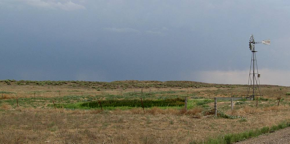 Artesian well in Cimarron National Grassland