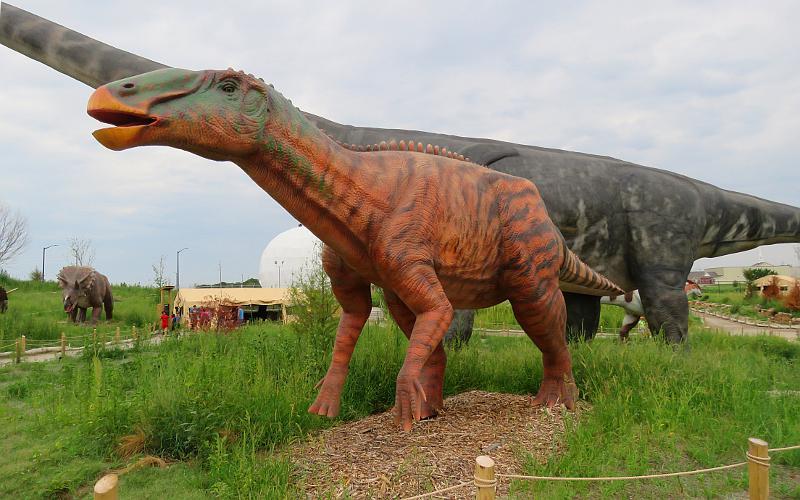 Field Station: Dinosaurs - Derby, Kansas